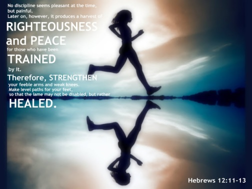 Hebrews 12_11
