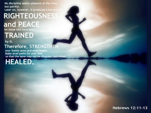 Hebrews 12_11