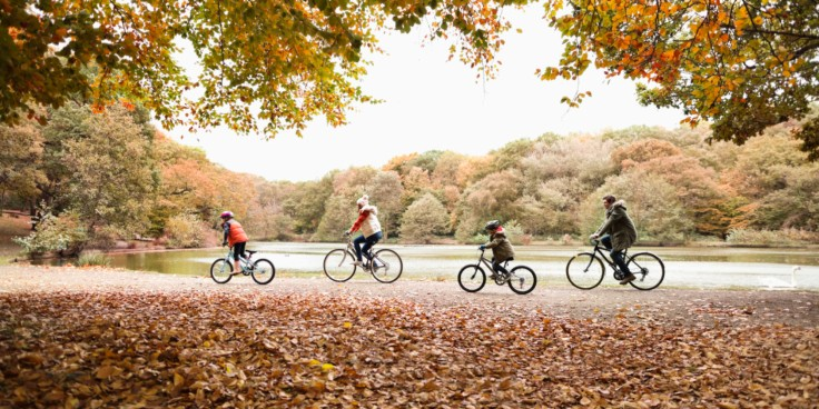 o-BIKING-IN-FALL-facebook huffington post.jpg